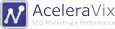 AceleraVix SEO Marketing e Performance